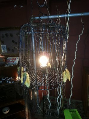 Uncage Your Ideas with Brutethink